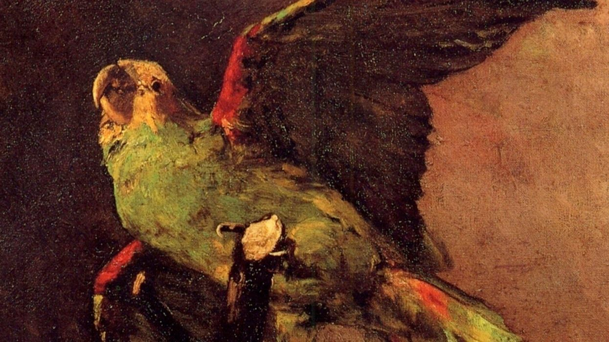 The Green Parrot by Vincent van Gogh, 1886