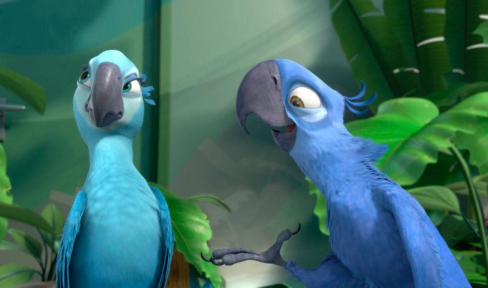 The Parrot From 'Rio' Is One Of 8 Species To Go Extinct This Decade