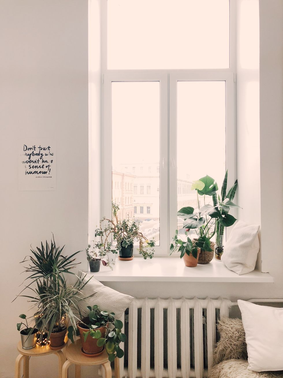 https://www.pexels.com/photo/photo-of-green-leaf-potted-plants-on-window-and-stand-930004/