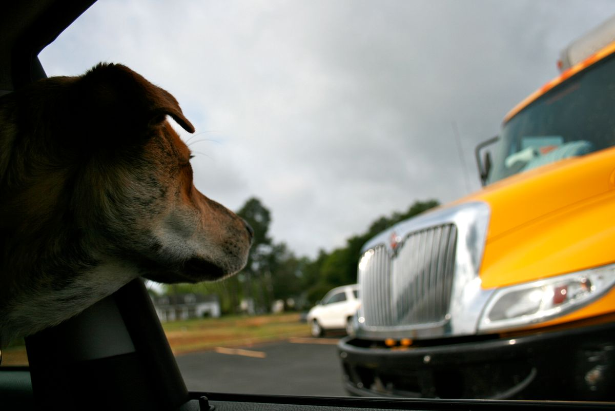Starting a New Life: Heading West in the Yellow Penske Truck