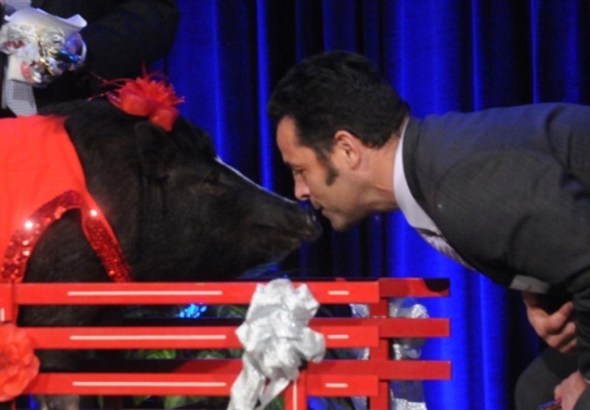 Penske's VP Named Top Fundraiser, Wins Smooch with Pig