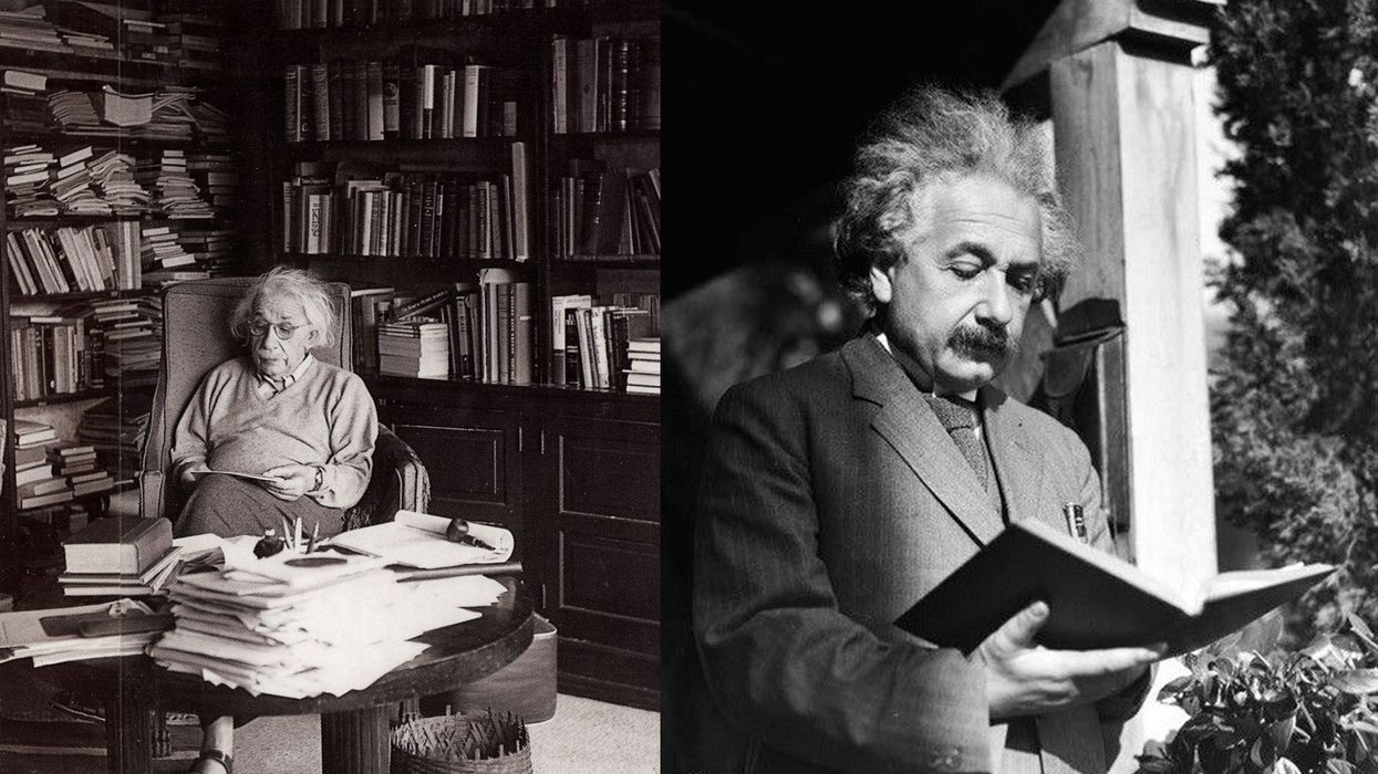 Albert Einstein reading