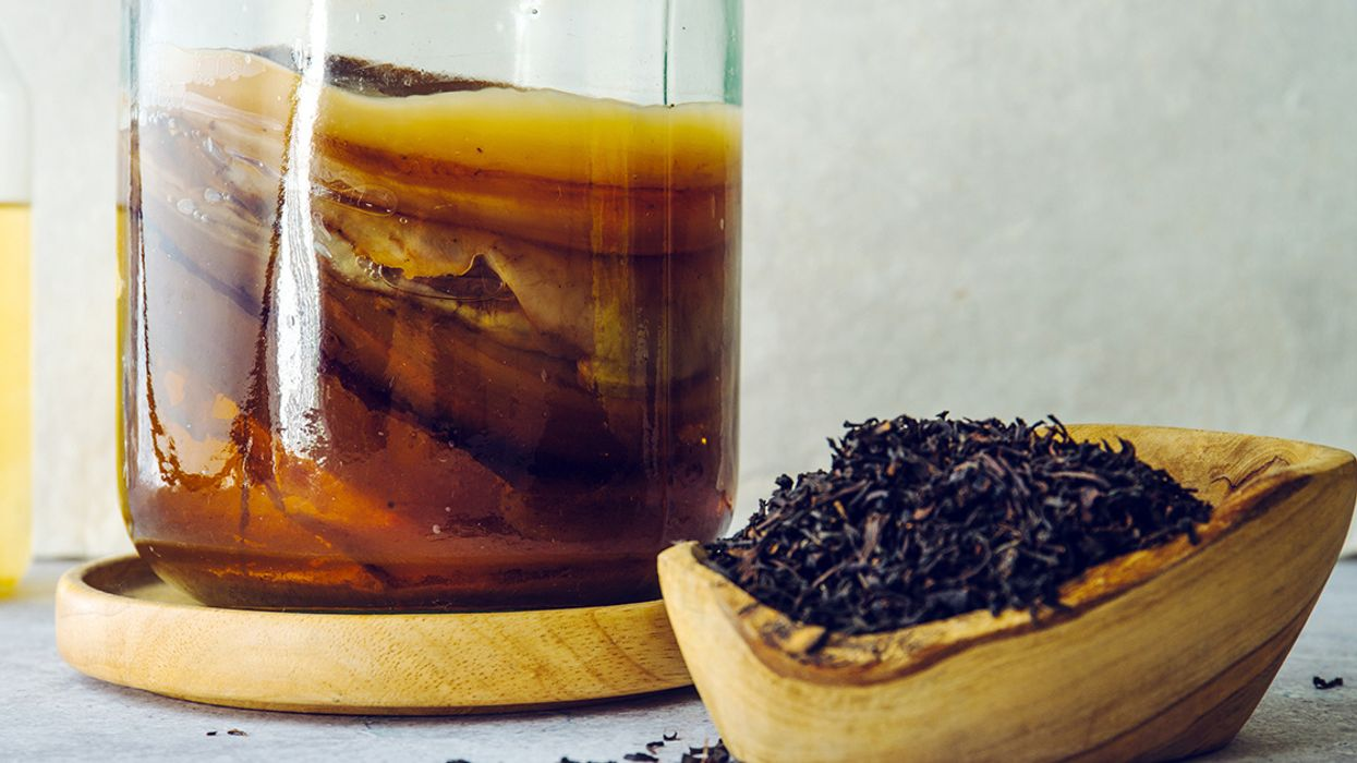 Kombucha SCOBY: What It Is and How to Make One