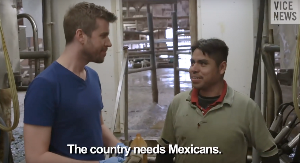 Thank Illegal Immigrants For Your Meat And Dairy
