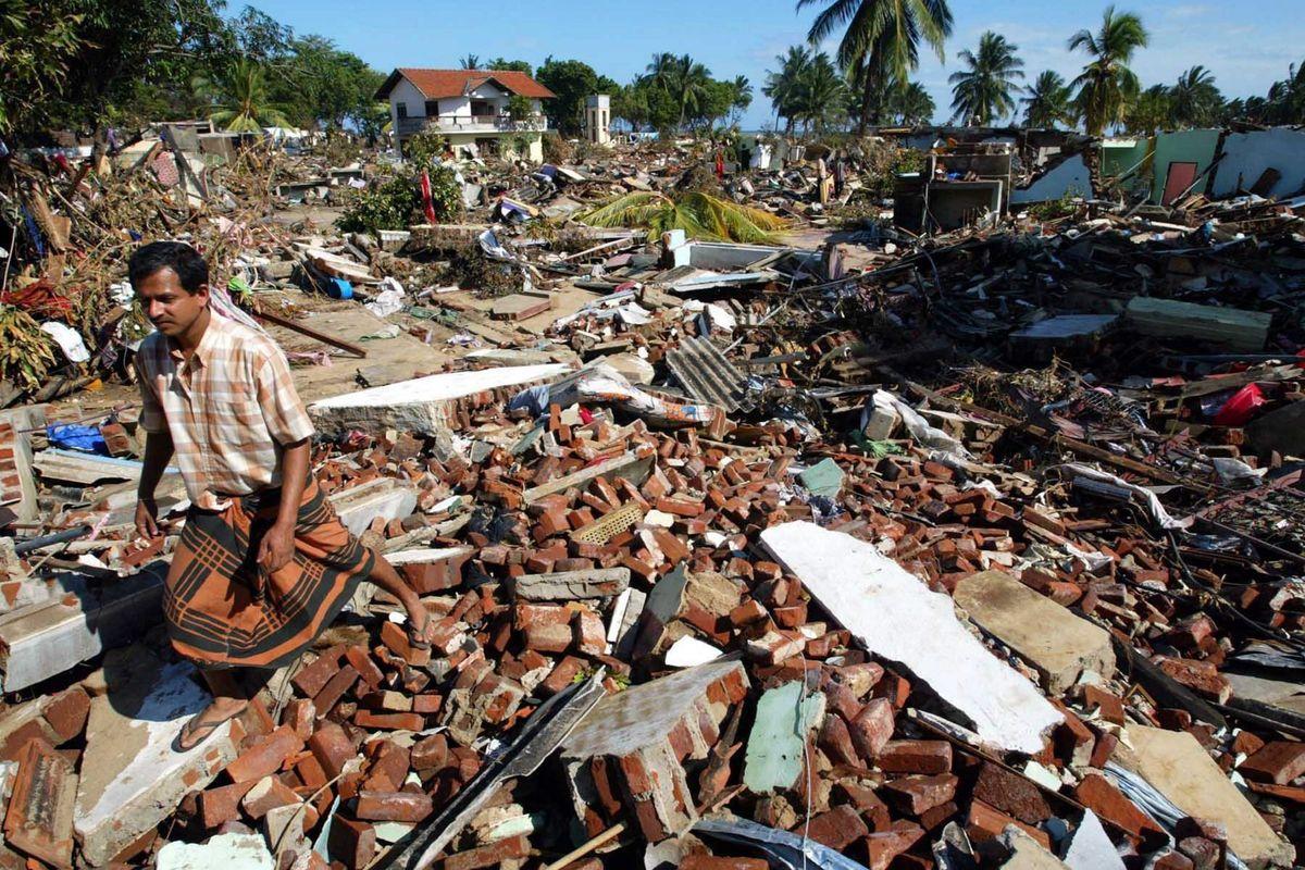Strage in Indonesia, l'Unicef cerca soldi. «Chiedete a Conticini»