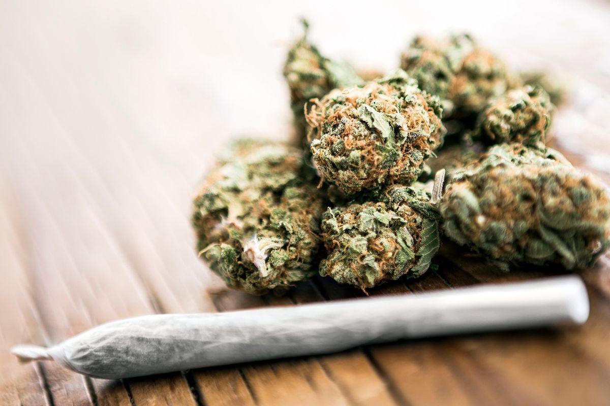 Aggirata la legge grazie a un trucco: la cannabis si vende in tabaccheria
