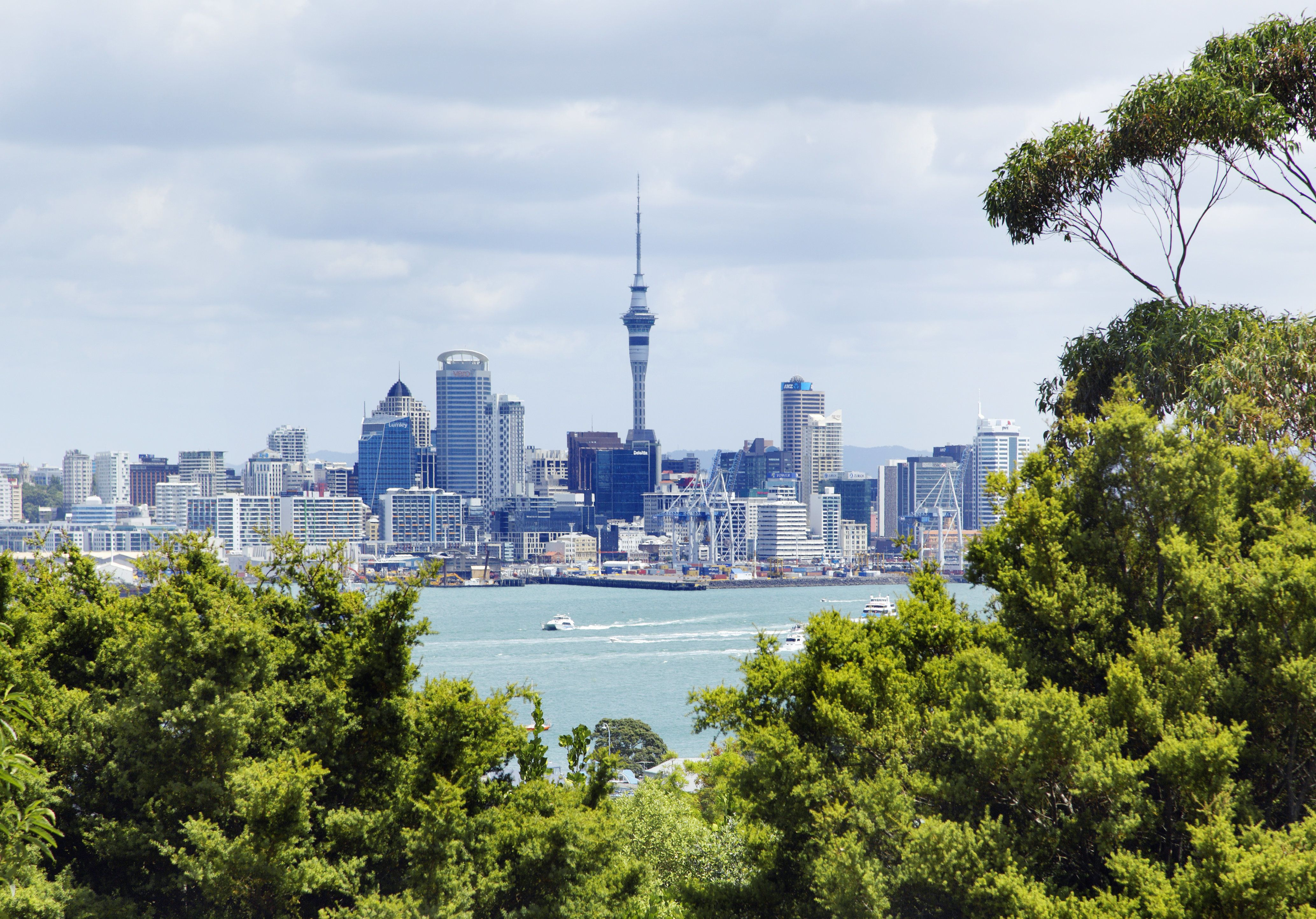 Wellington New Zealand Coordinates World City Travel Quote Wall Art Print