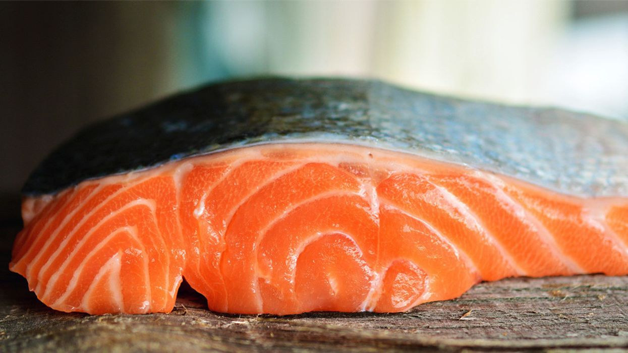 FDA Puts U.S. Consumers at 'Serious Risk' by Allowing GE Salmon 'Frankenfish' Imports