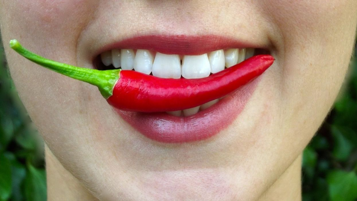 A pleasure to burn: Why do people like spicy foods?