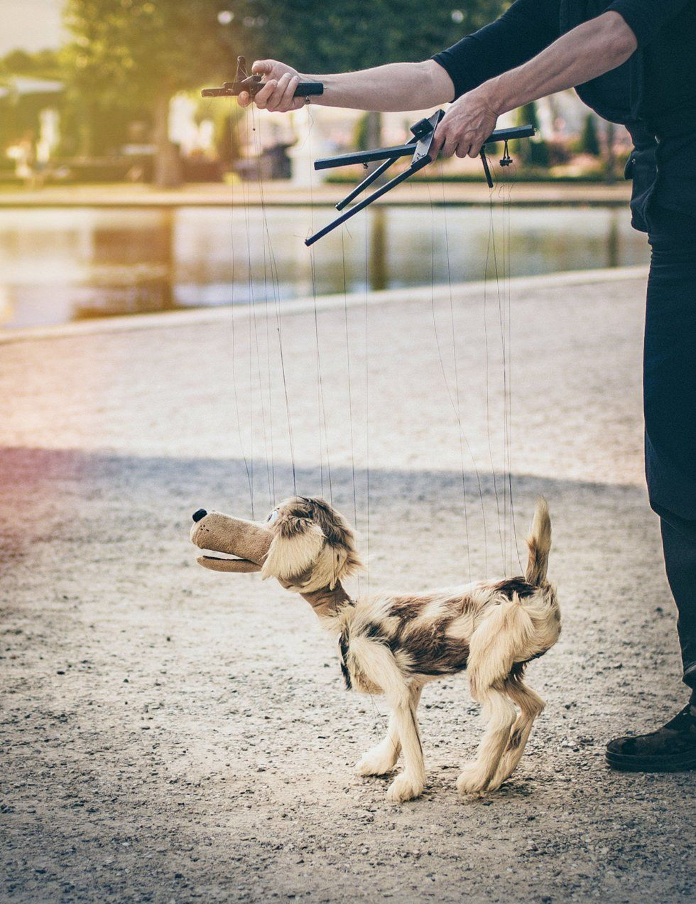 Dog puppet on strings