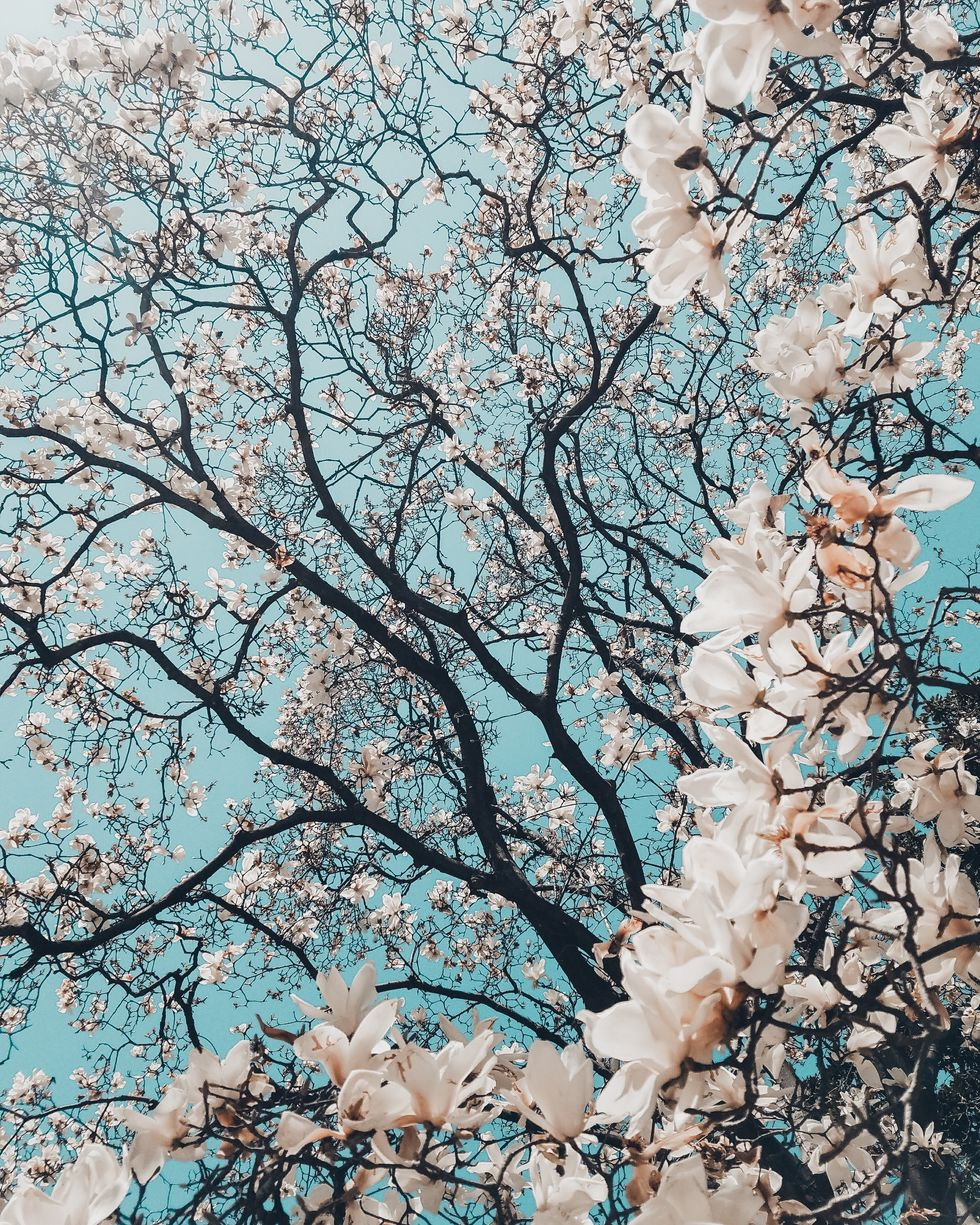 Spring Is Finally Here And We're All Enjoying These 10 Beautiful Things