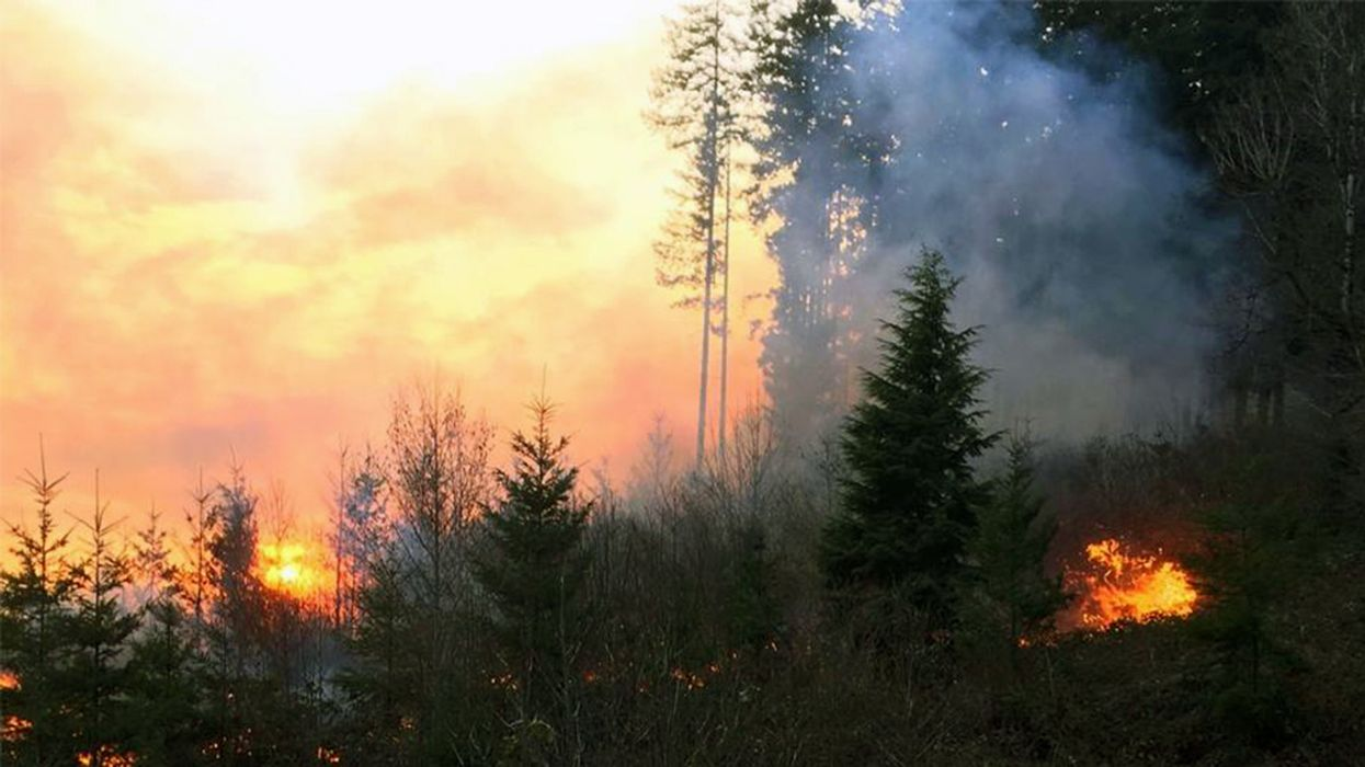 Early-Season Wildfire Threatens Homes, Buildings in Oregon