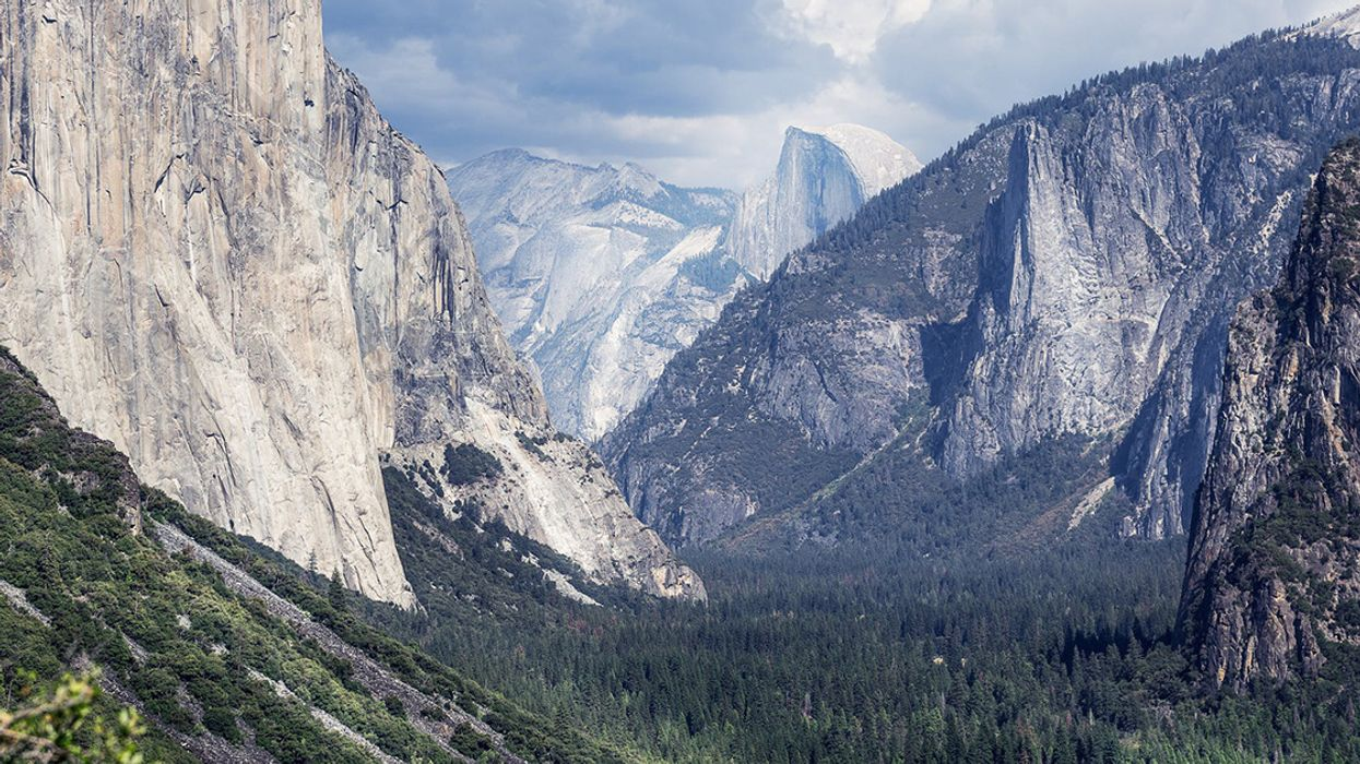 5 Acts of Environmental Leadership to Celebrate This Presidents Day