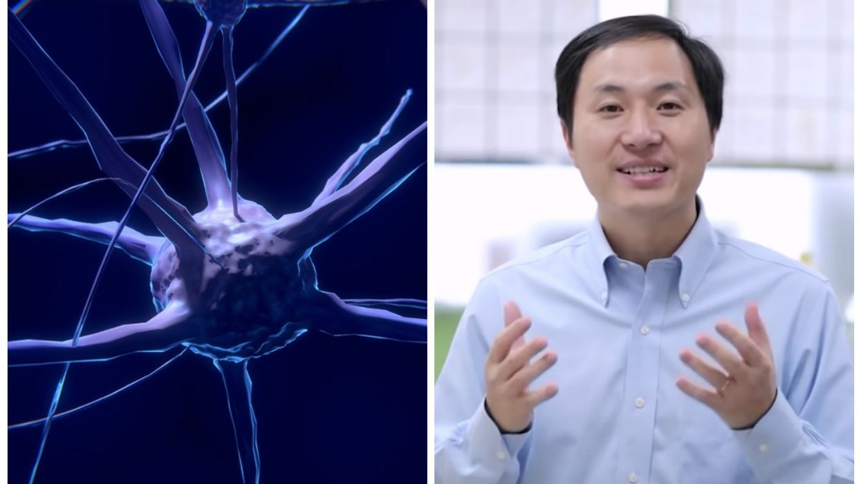 CRISPR-edited babies born in China may have enhanced brain functions