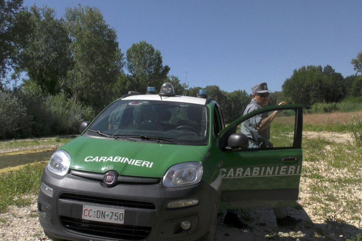 Grazie a Renzi il concorso per il corpo forestale è diventato un'odissea