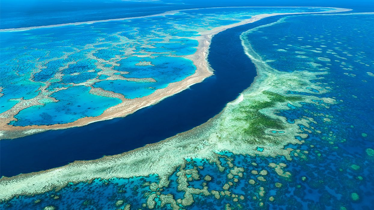 Australia Plans to Dump More Than 1 Million Tons of Sludge in Great Barrier Reef Waters