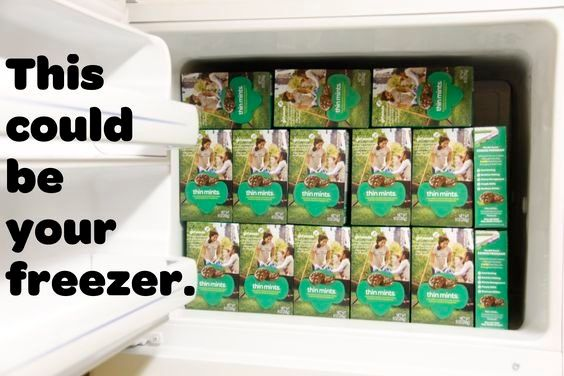 girl scout cookies stock up