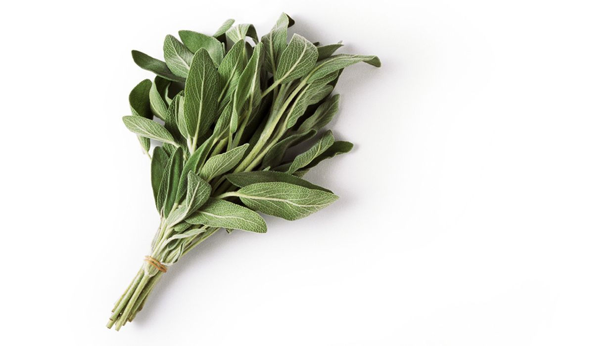 12 Health Benefits and Uses of Sage