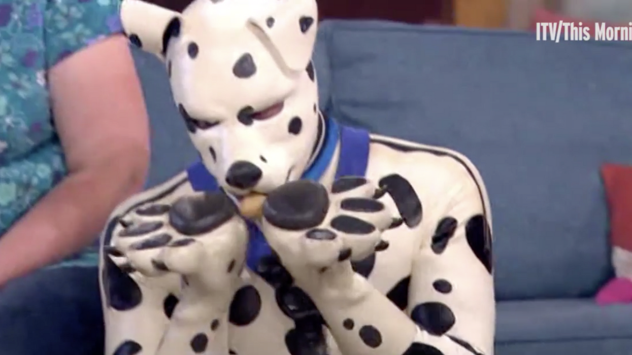 British man who identifies as a pup wears a fur dog suit, barks, licks, and bites his friends