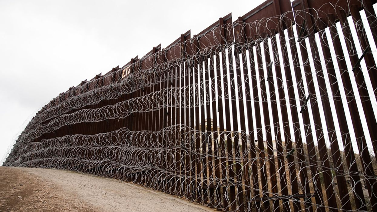 'This Is Not Like a Fence in a Backyard' — Trump's Border Wall vs. Wildlife