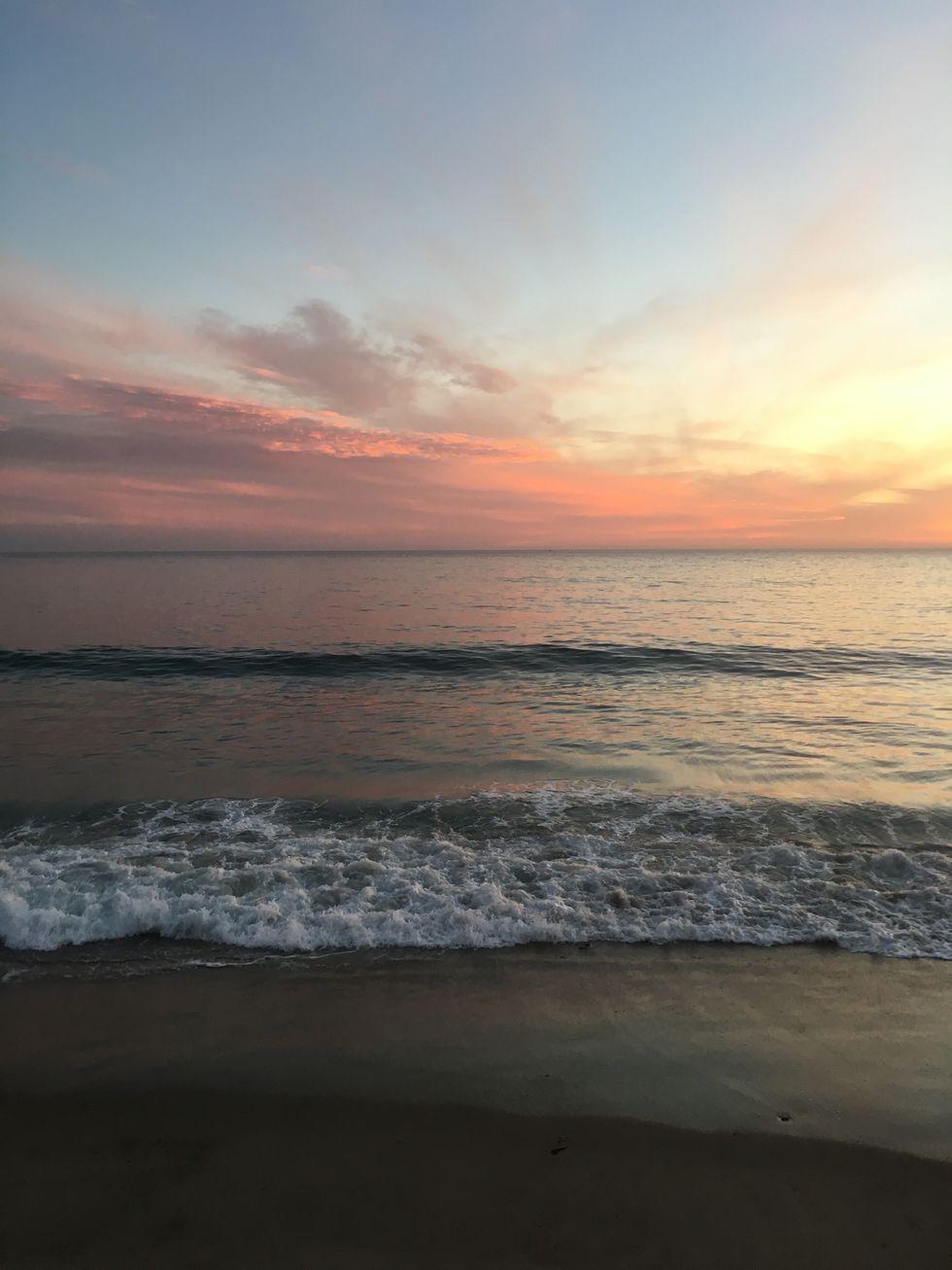 My Reflection Of Rachel Carson's 'The Marginal World'