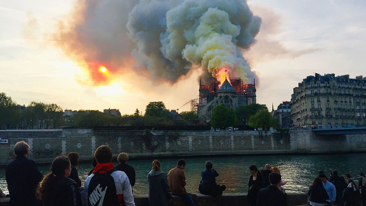 Jane Goodall and Other Environmental Leaders Respond to Notre Dame Fire