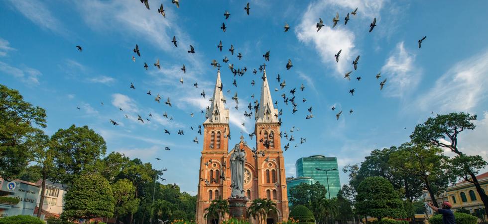 https://www.pexels.com/photo/flock-of-birds-under-blue-and-white-sky-1018478/