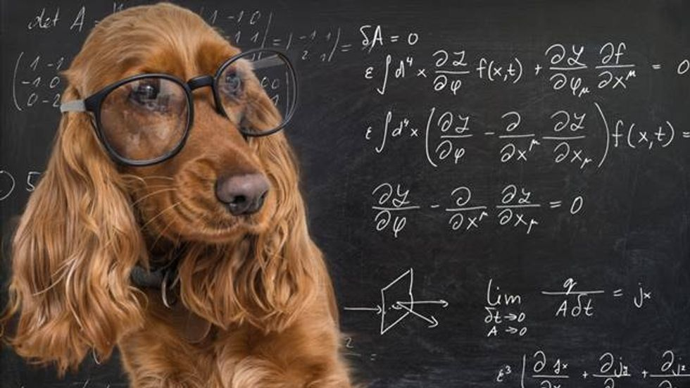 This simple math problem is driving everyone nuts. Can you solve it?