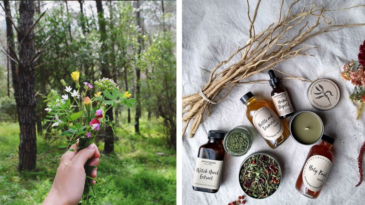 5 Instagrammers Who Preach the Power of Herbs