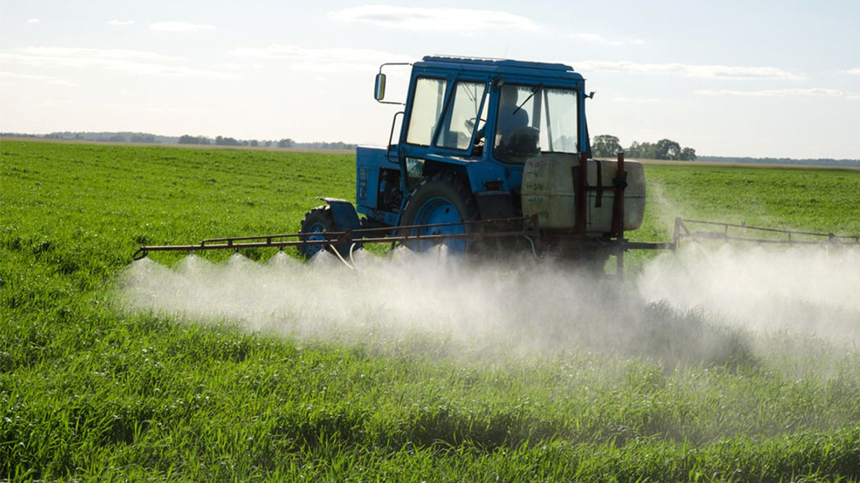 Early Pesticide Exposure Linked to Increased Autism Risk