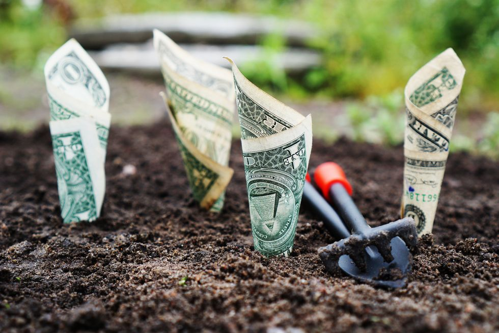 8 Creative Ways To Earn Money In College
