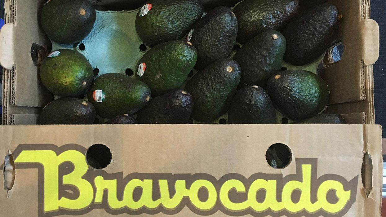 Avocados Shipped to Six States Recalled Over Listeria Fears