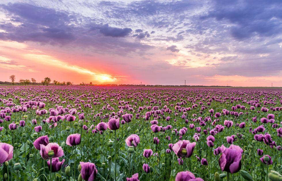 10 Biblical Ways To Turn Any Bad Day Into Something Beautiful