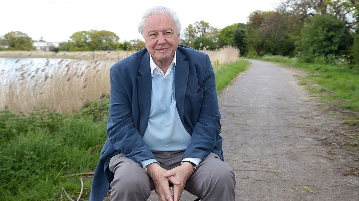 Sir David Attenborough Set to Present BBC Documentary on Climate Change