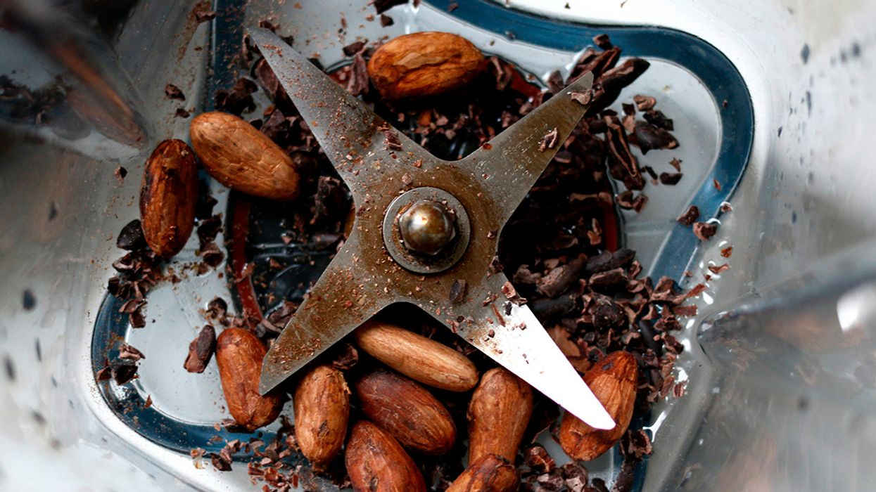 What Are Cacao Nibs? Nutrition, Benefits and Culinary Uses