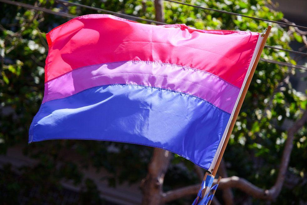 https://en.wikipedia.org/wiki/Bisexual_pride_flag#/media/File:The_bisexual_pride_flag_(3673713584).jpg