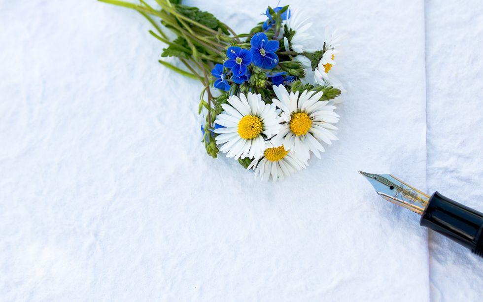 https://www.pexels.com/photo/close-up-daisy-flora-flowers-433468/