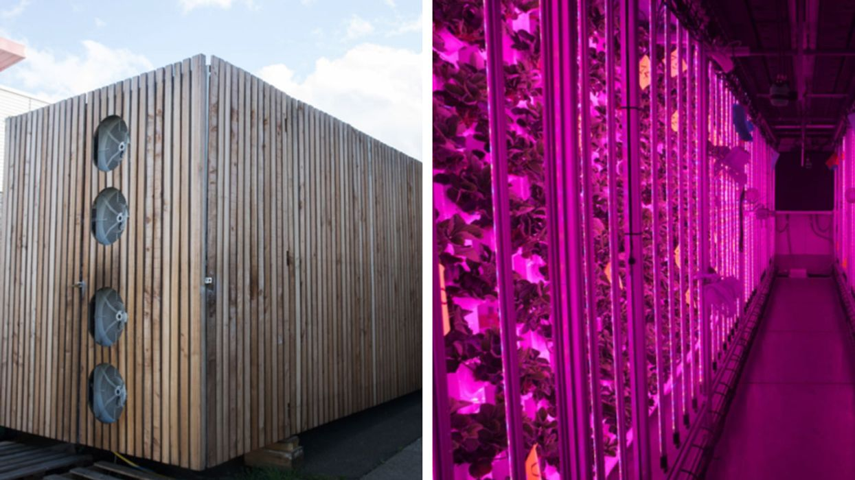 This Urban Farm Grows Strawberries in Shipping Containers in Central Paris