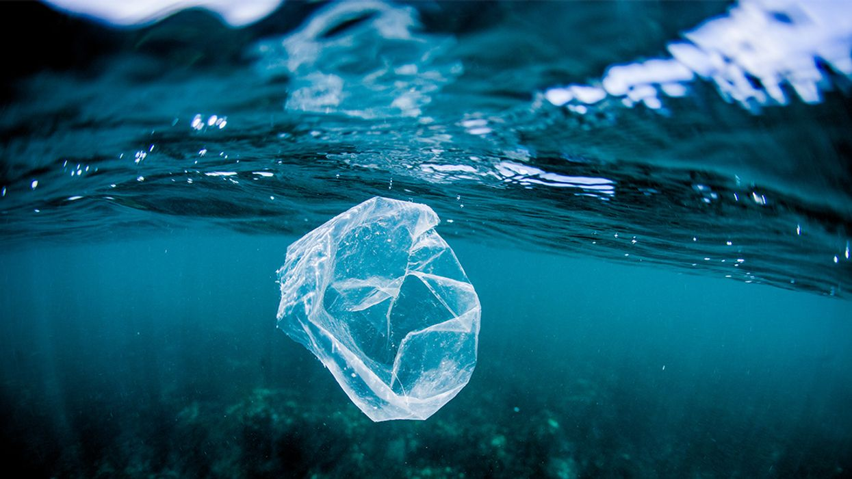 Plastic Pollution Harms Ocean Bacteria That Produce 10 Percent of Earth's Oxygen