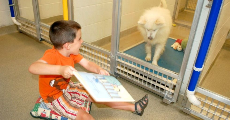 Beautiful things can happen when kids read to dogs.