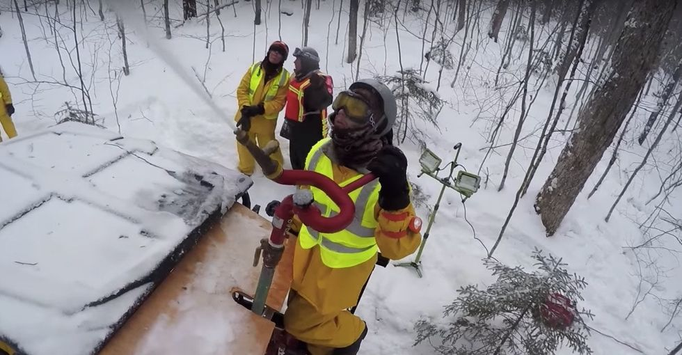 We're plunging this forest into a deep freeze to get a look into the future.