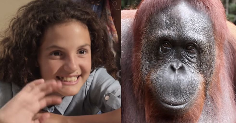 This GIF'd Conversation Between A Little Girl And An Ape Might Not End How You'd Expect