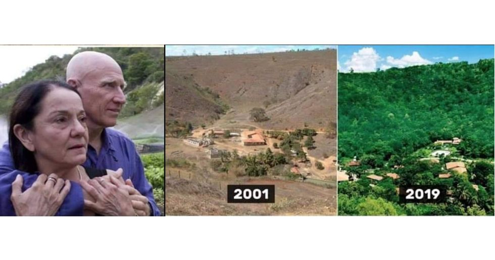 Brazilian couple planted 4 million trees within 18 years to form a large forest.