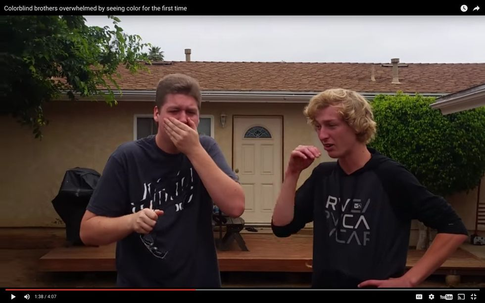 Two color-blind brothers see each other in color for the first time, and it's magical.