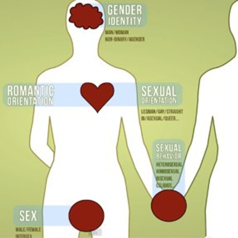 Everything You Wanted To Know About Human Sexuality But Were Afraid To Ask