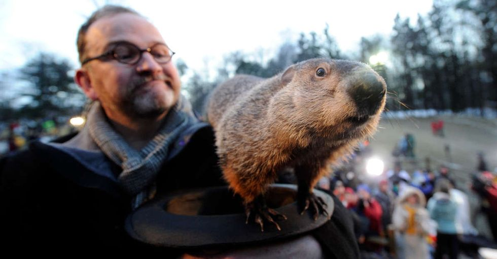 If you look at years of Groundhog Day data, a scary trend emerges.