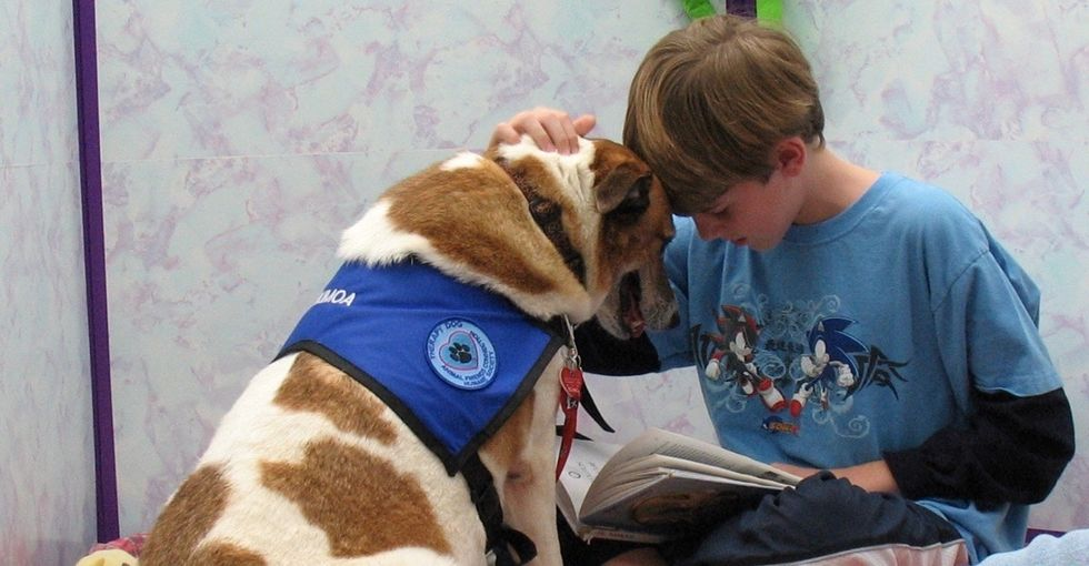 Reading in front of a class can be stressful for kids. Luckily, dogs can make it easier.
