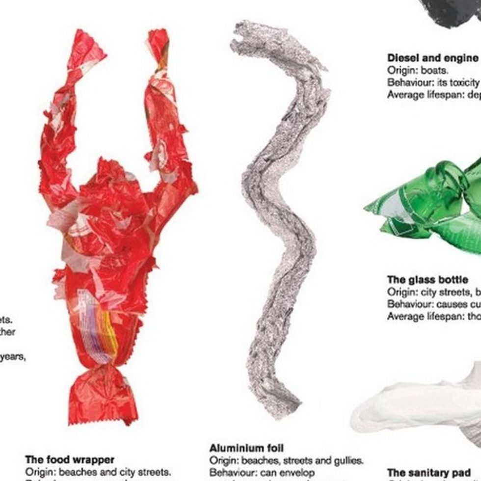 The Most Dangerous Sea Creatures In The World Are On This Graphic