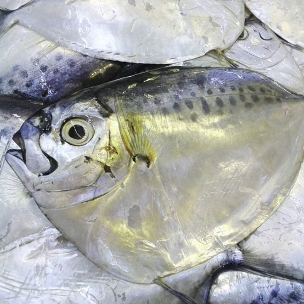 Consider This Nasty Fact Before Digging Into Your Next Seafood Feast