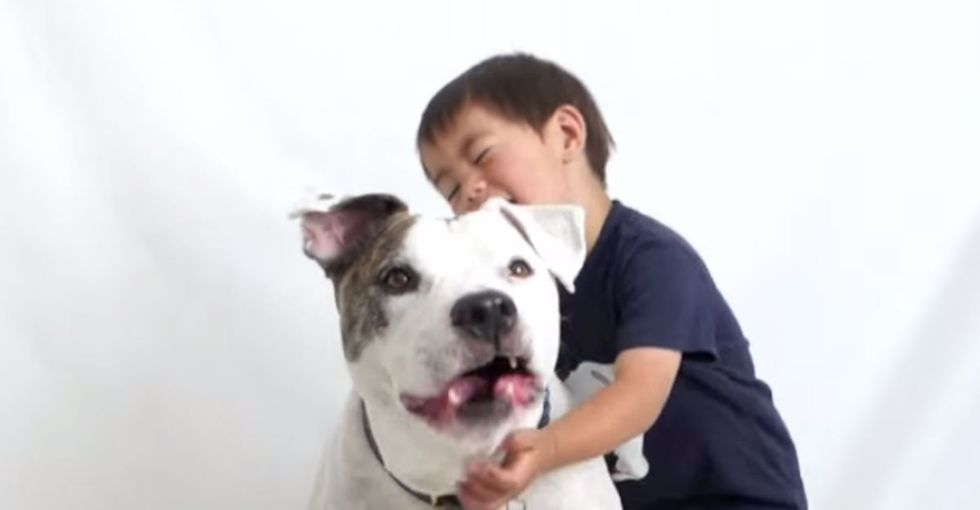The pit bull used to watch over kids. But now it's got a bad rep. Here's how to fix it.